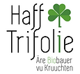 haff-trifolie-600x557.png