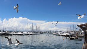 9 motivos para conhecer Punta Del Este (Uruguai 05)