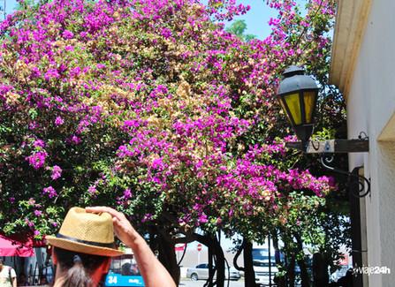 Colônia do Sacramento (Uruguai 07)