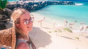 Aruba: Curiosidades e roteiro de 1 dia