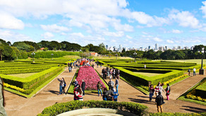 11 motivos para visitar Curitiba