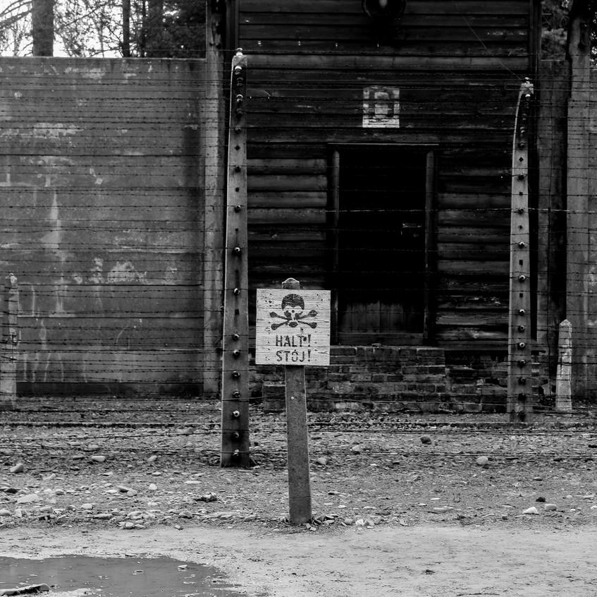 Auschwitz viaje24h