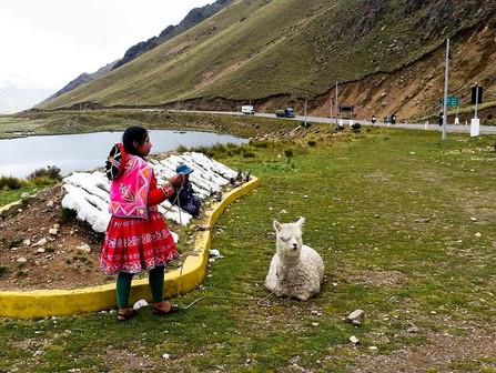 Rota do Sol (Peru 05)