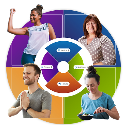 Health-Wheel.png