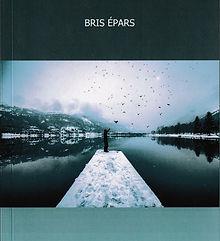 Collaboration - couverture de livre pour Stéphane Amiot Ecrivain