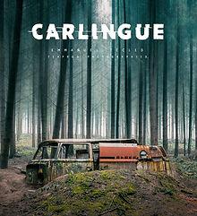 """Couverture du premier livre de la saga sur l'abandon -  """"CARLINGUE"""""""