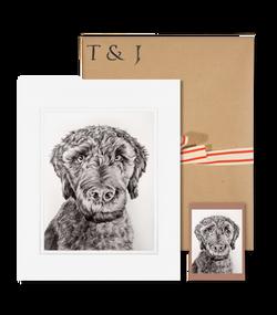 packaging_brookemeika_dog