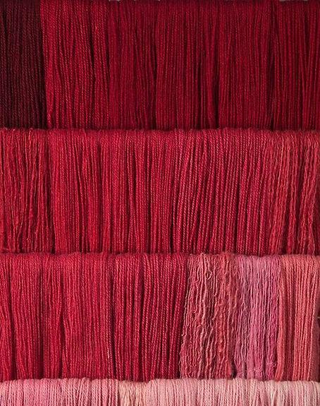 Cochineal1_edited.jpg