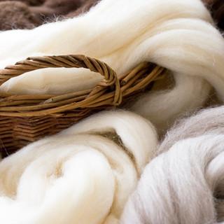 WoolRoving.jpg