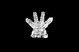лого_бел_прозр.png