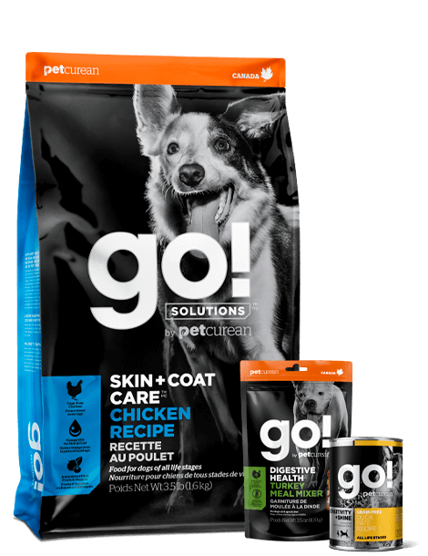 GO! Solutuons by Petcurean