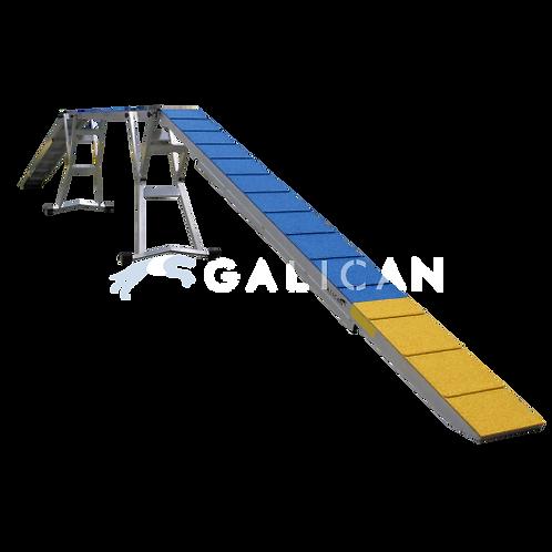 Intercan Dogwalk Down Planks