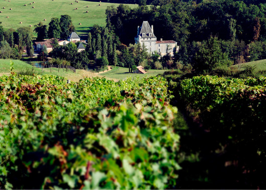 Vignes&Chateau2.jpg