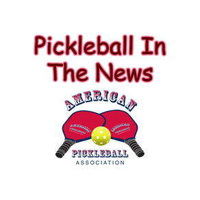 Pickleball Paddles Market Challenges, and Growth Analysis.