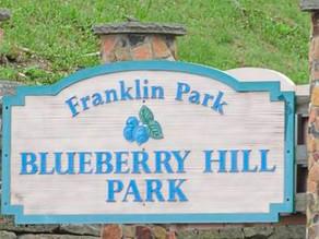 Pickleball in Franklin Park