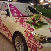 hmo-alex-limousine-ليموزين-حمو-اليكس (28