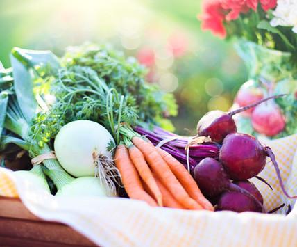 agriculture-basket-beets-533360 (1).jpg