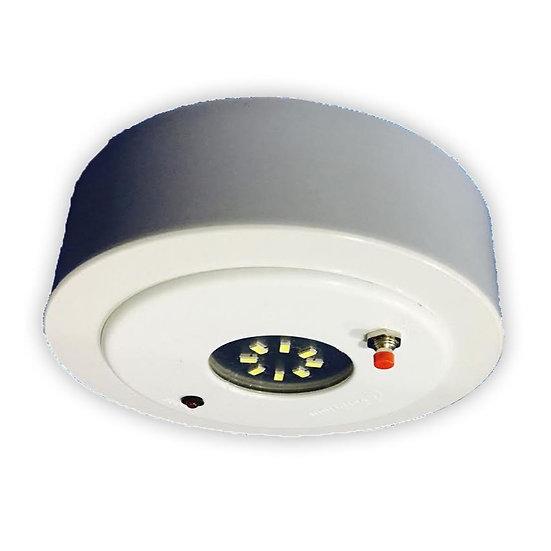 M6 LED Surface Emergency Light c/w 3.6V 1AH Ni-Cad Battery