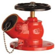 SRI 65mm BS10 Table E Flange Oblique Landing Valve