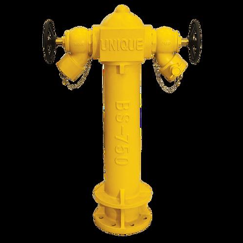 UNIQUE Oblique Landing Valve Hydrant