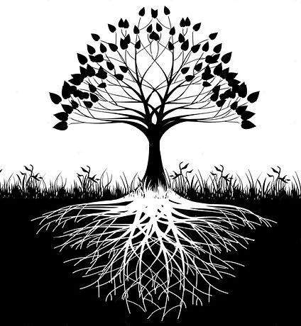 identity tree clean.jpg