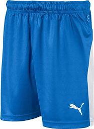 Blue PUMA Uniform Shorts.jpeg