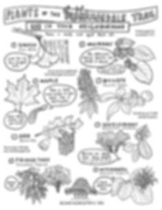 BT_PlantScavengerHunt_pg1.jpg