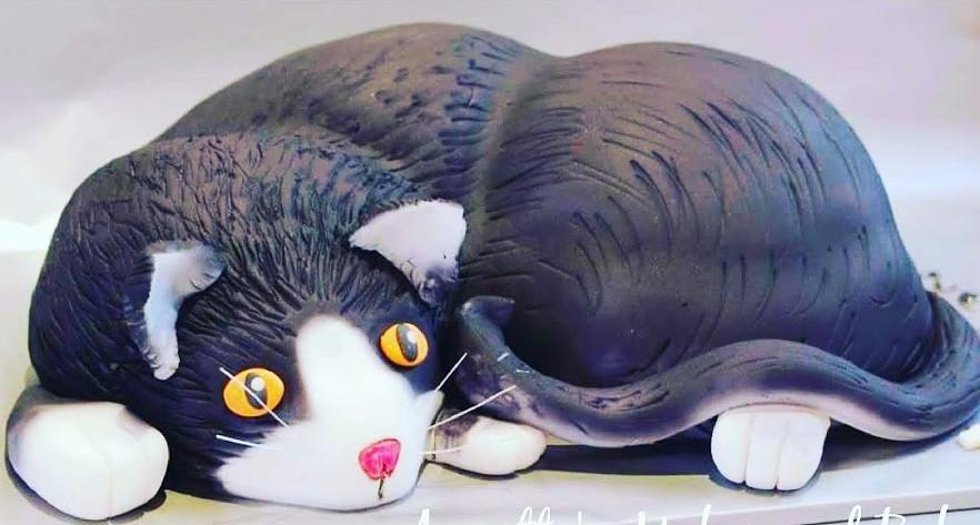 3D cat cake_Fotor.jpg