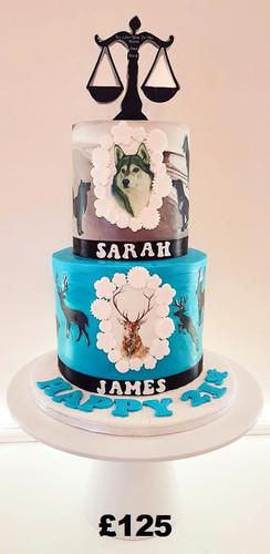 Twins birthday cake.jpg