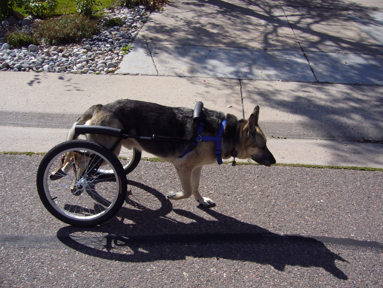 Cole's cart 618