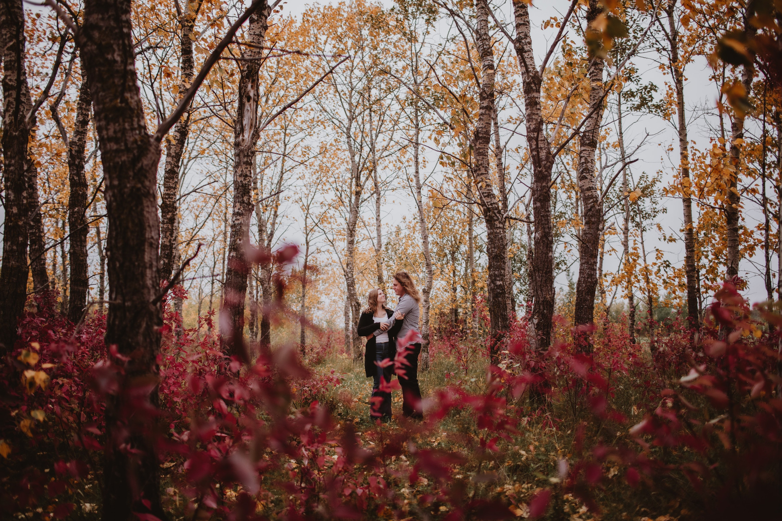 Fall Forest Engagement Photos in rural Manitoba.