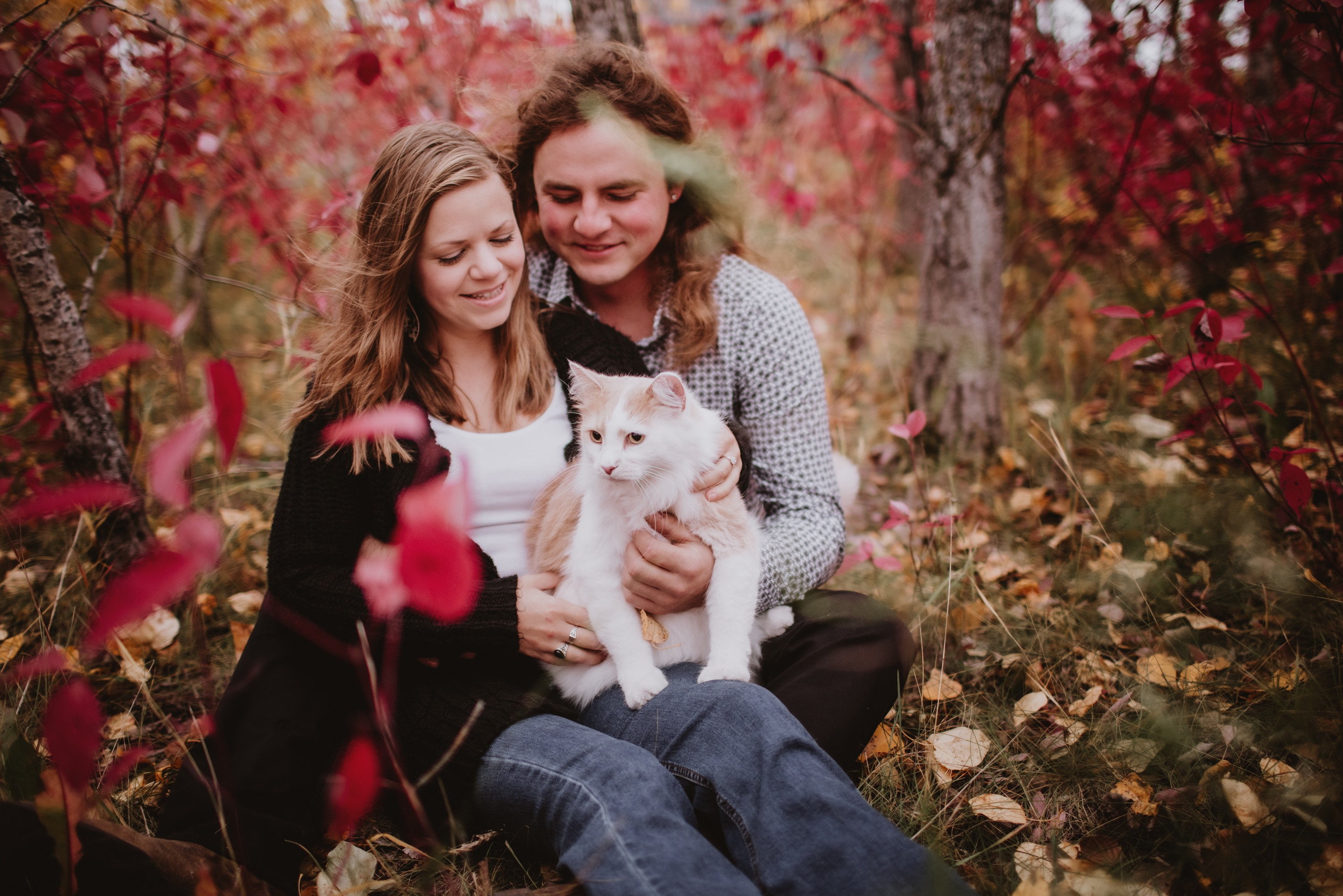 Cat Sits on Lap during fall engagement photoshoot.