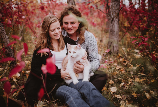 Cat with Engaged Couple