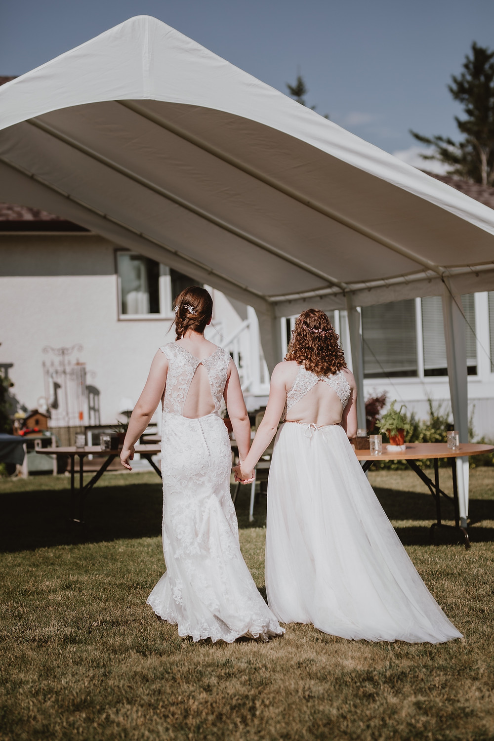 Brides walk from their ceremony to reception tent.