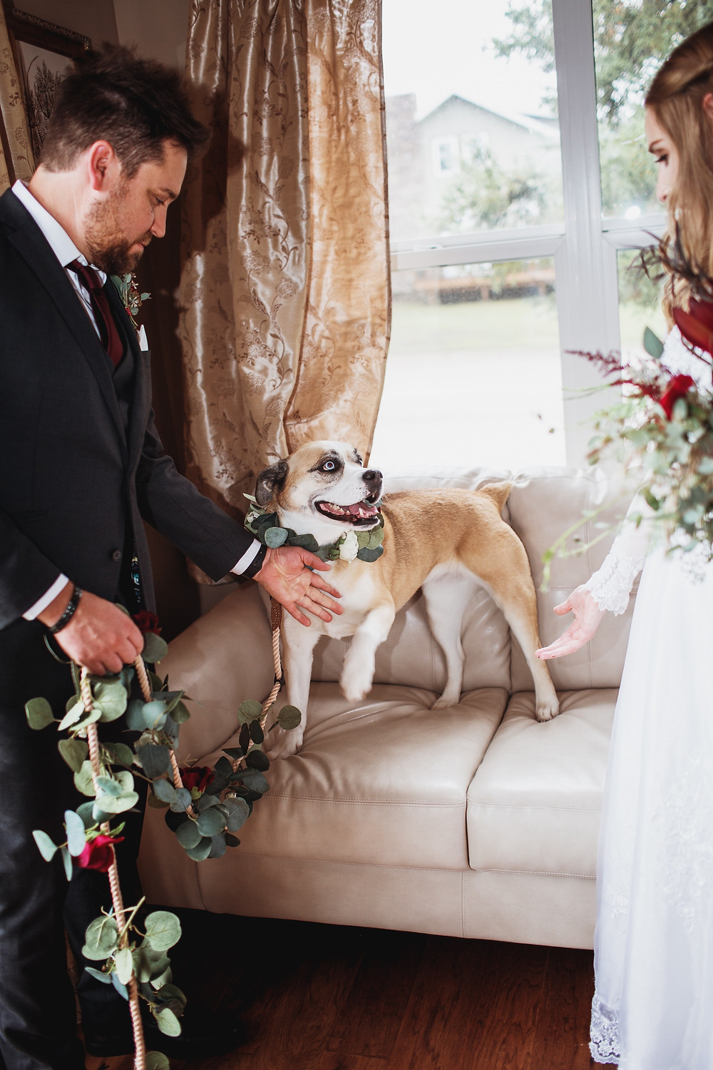 Dog excited to see her humans get married in Clear Lake, Manitoba.