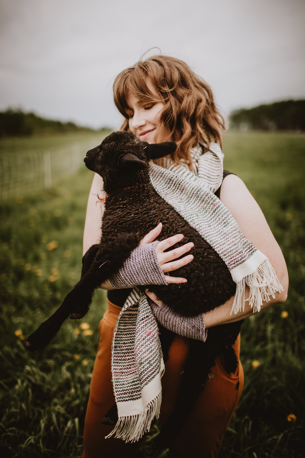 Black sheep in the arms of a local fibre artist.