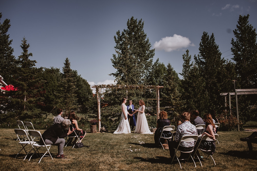 Brides hold hands under birch arch and blue sky.
