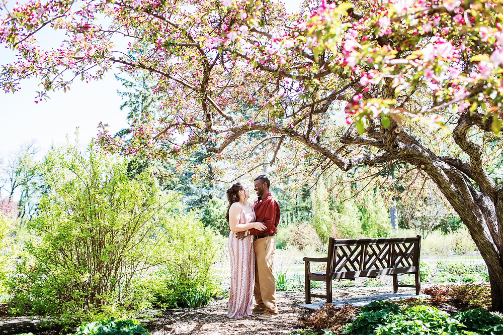 Spring engagement session at Assiniboine Park.