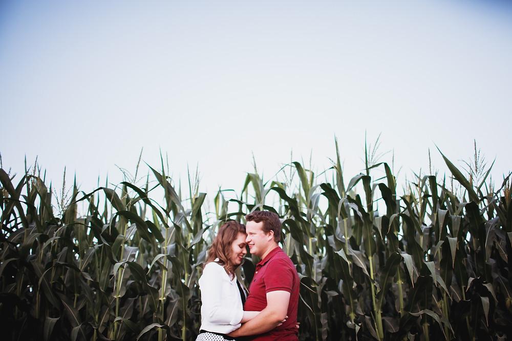 Farm engagement photo shoot in corn field.