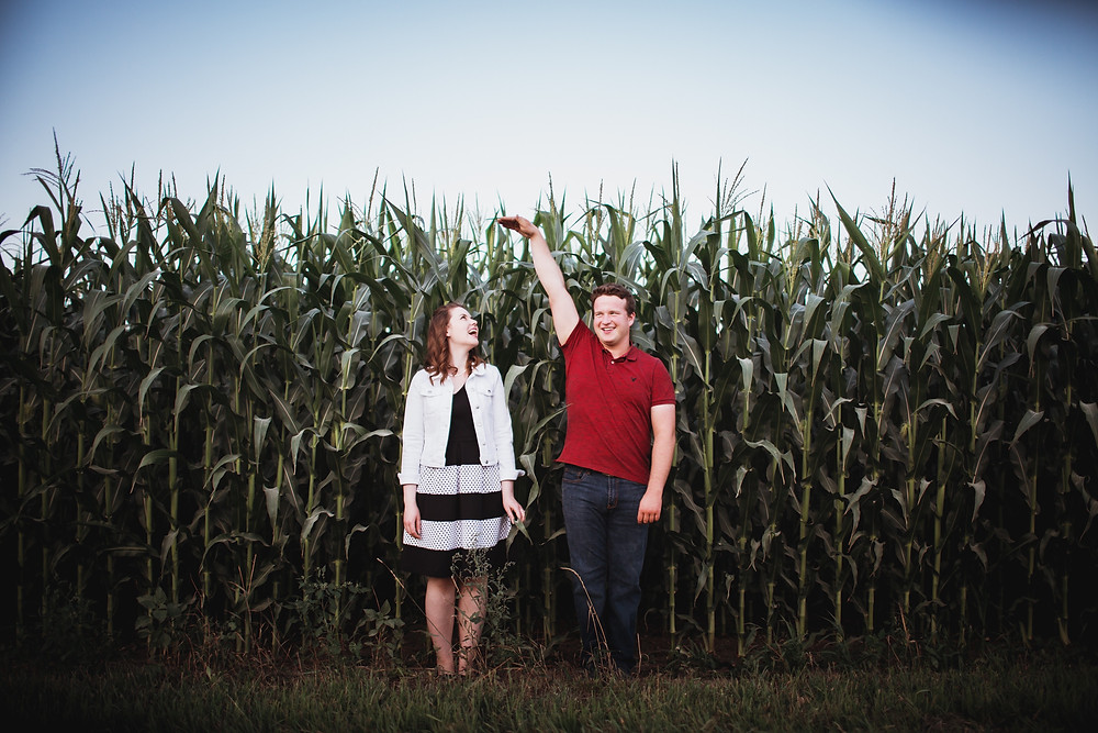 Engagement photos in a corn field.