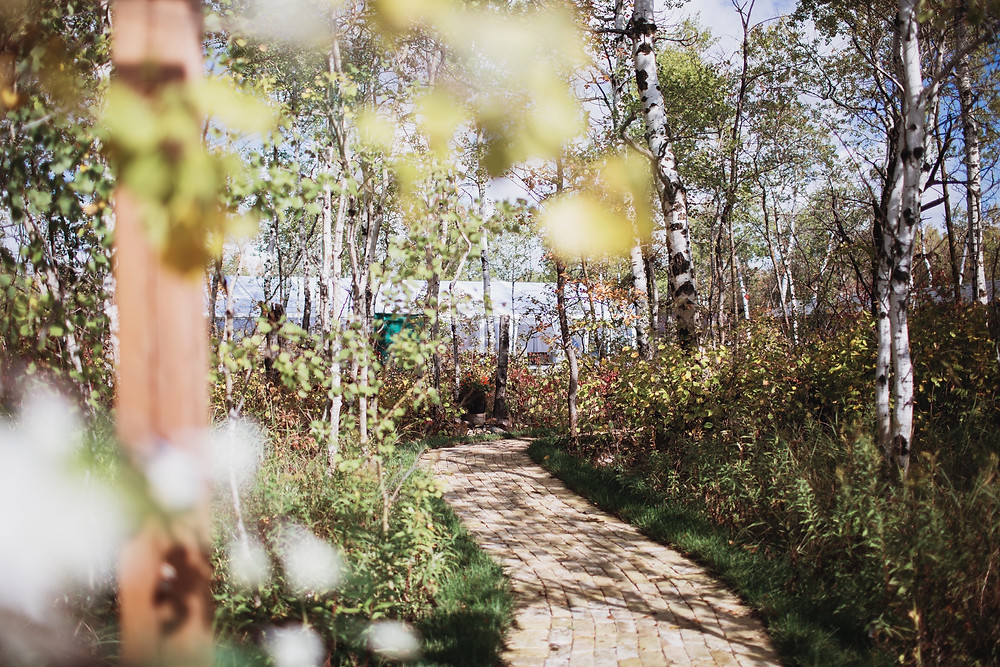 Kinloch Grove's entrance pathway.