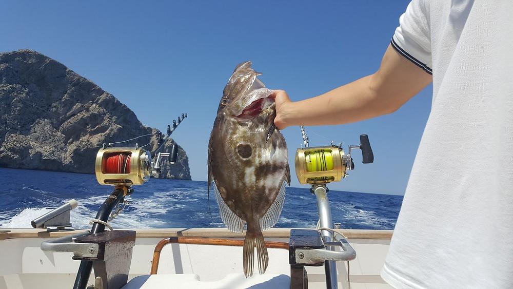 SPORT FISHING IN MALLORCA