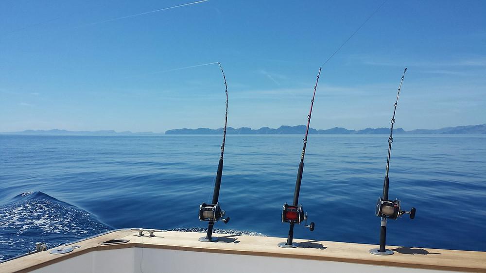 BIG TUNA  MALLORCA & BIG GAME FISHING  TROLLING FISHING