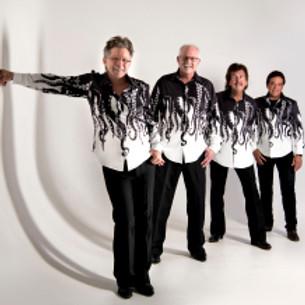 Mark Lucas & the Rhythm Cats