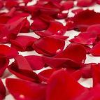 valentines day.jpeg