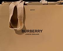 Burburry Bag.png