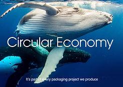 Circular v2.jpg