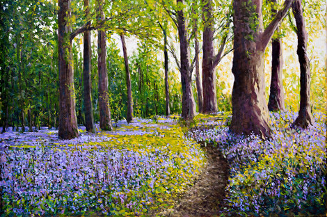 The old bluebell path (Killarney)