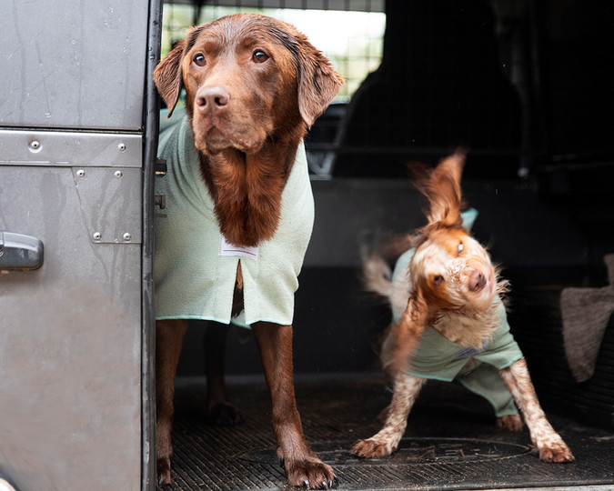 Toby and Alexander October 2020_Paws and
