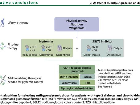 Enf Renal Diabética TIPS ( KDIGO 2020)